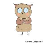 eule_bild-clipart_-_lustige_tierbilder_gratis_20150528_1626206399