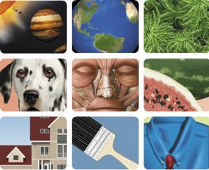 Free online picture dictionaries   German Language Workshop