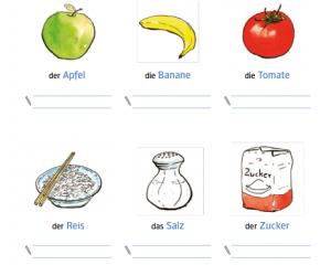 French English Visual Bilingual Dictionary Pdf